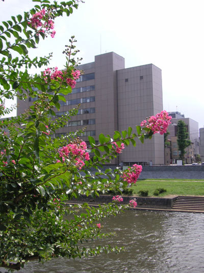 光原社から北上川を望む
